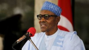 Appoint next amnesty boss from Delta Ijaw, group  begs Buhari